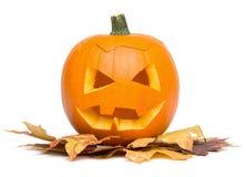 在白色-在秋叶的南瓜面孔-隔绝的万圣夜 免版税库存图片