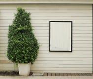在白色织地不很细木墙壁上的白色窗口,也在左边的一棵绿色树 库存图片