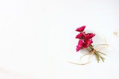 在白色织地不很细木背景的花 图库摄影