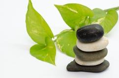 在白色-查出的石和绿色叶子 库存图片