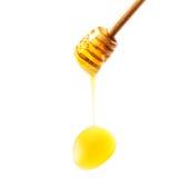 在白色b与黄色蜂蜜下落的木蜂蜜浸染工隔绝的 库存照片