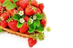 在白色bac隔绝的一个柳条筐的开胃草莓 免版税库存照片
