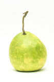 在白色backg隔绝的柚 库存图片