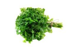 在白色backgroun隔绝的束新鲜,绿色荷兰芹叶子 免版税图库摄影