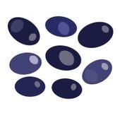 在白色backround传染媒介的黑橄榄 免版税库存图片
