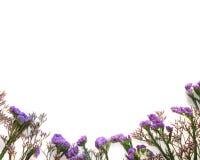 在白色bakground的当前推车与紫罗兰色花 库存照片