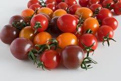 在白色blackgrownd的被分类的蕃茄 库存图片