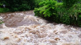 在白长袍的洪水在埃特林根 股票视频