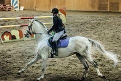 在白马的年轻女性车手 免版税图库摄影