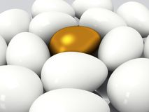 在白鸡蛋中的独特的金黄鸡蛋 免版税库存照片