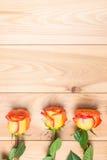 在的三朵玫瑰木板和拷贝空间 免版税库存照片