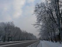 在的冬日圣彼德堡 库存照片
