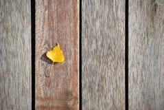 在的小黄色叶子被风化的木板 免版税库存图片