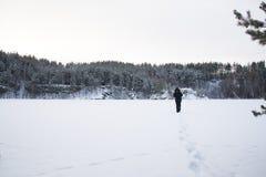 在的新脚印在积雪的风景 免版税库存图片