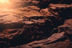 在的日落毁损被照亮的岩石表面 免版税库存图片