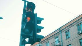 在的红绿灯交叉路 股票视频