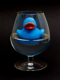 在的蓝色橡胶鸭子cognacglass 免版税库存照片