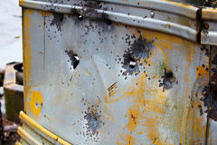 在的被剥离的被放弃的公共汽车猎人在公有土地野营 库存图片