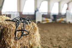 在的马设备干草新鲜的砖  免版税库存照片