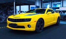 在皇家车展的美国豪华肌肉汽车 库存照片