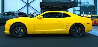 在皇家车展的美国豪华肌肉汽车 免版税库存图片