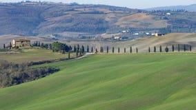 在皮恩扎和圣奎里科多尔恰,锡耶纳,托斯卡纳,意大利之间的美丽的乡下 免版税图库摄影