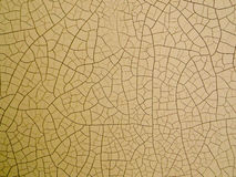 在皮肤的木裂缝由低高温 库存图片