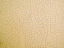 在皮肤的木裂缝由低高温 免版税图库摄影
