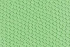在皮肤的绿色抽象龙或蛇标度 皇族释放例证