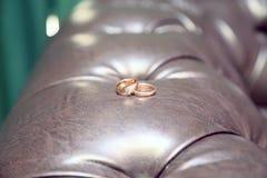 在皮革沙发的两只金戒指 库存图片