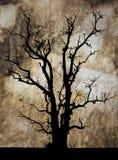 在皮革隐藏的停止的结构树剪影。 库存图片