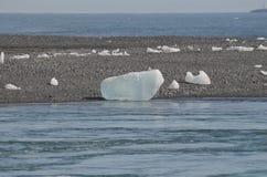 在盐水湖的岸的冰岛冰山 库存图片