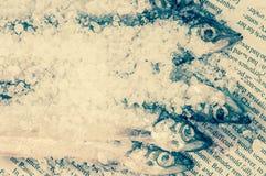 在盐的沙丁鱼在报纸 免版税库存图片