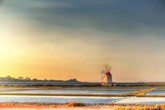 在盐的风车特拉帕尼西西里岛 免版税库存照片