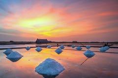 在盐领域的日落 库存照片
