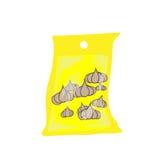 在盐水保存的袋子大蒜 库存例证