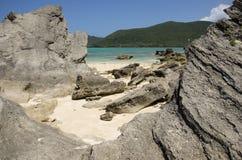 在盐水湖海滩豪勋爵岛的有层次的calcarenite 库存照片
