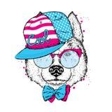 在盖帽、玻璃和领带的一条美丽的狗 导航明信片或海报的,在衣裳的印刷品例证 纯血统小狗 多壳 库存图片