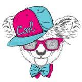 在盖帽和领带的逗人喜爱的考拉 考拉传染媒介 熊看板卡eps10问候向量 澳洲 美国,美国 考拉佩带的玻璃 免版税库存图片
