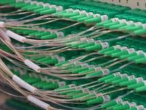 在盘区的光纤连接器 库存照片