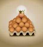 在盘区鸡蛋的鸡鸡蛋 免版税图库摄影