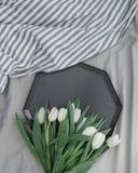 在盘子的白色郁金香 库存照片