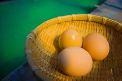 在盘子的鸡蛋在Jigoku温泉城 图库摄影