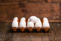 在盘子的鸡蛋 库存图片