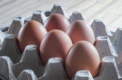 在盘子的鸡鸡蛋 库存照片