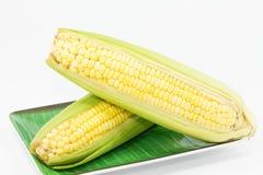 在盘的未加工的玉米 库存照片