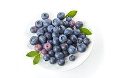 在盘的蓝莓 免版税库存照片