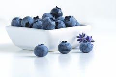 在盘的蓝莓 免版税库存图片
