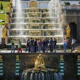 在盛大小瀑布前面的许多游人在Peterhof,俄罗斯公园  免版税库存图片