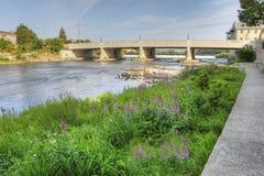在盛大河前面的花在剑桥 免版税库存照片